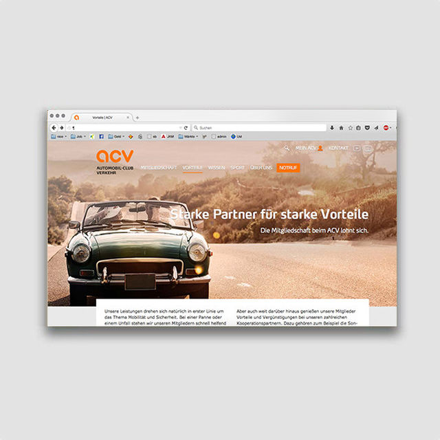 Portfolio: Webseite und Geschäftsbericht